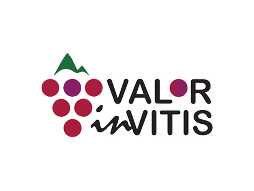 VALORinVITIS